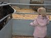 Odds Farm Jan 2014 006