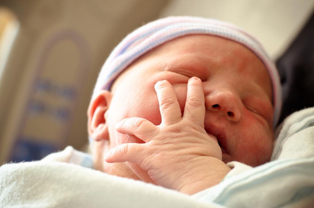 evan | newborn