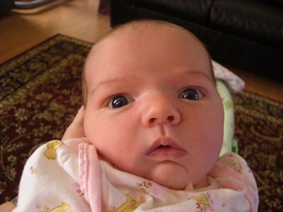 Grandchild #7 born 9/11/08: Ella (Indiana trip) to Mike & Laura
