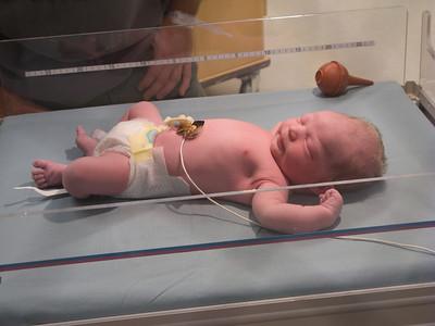 My new born Grand son