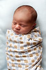 05_HR_Hill-newborn-2013