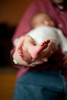 32_HR_Hill-newborn-2013