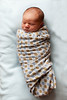 04_HR_Hill-newborn-2013