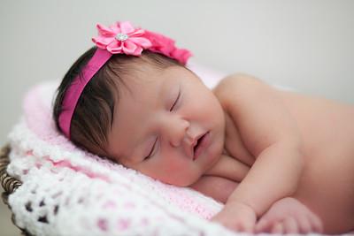 Roberts Newborn Session