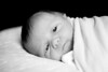03_HR_Vardaro-newborn