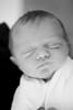 20_HR_Vardaro-newborn