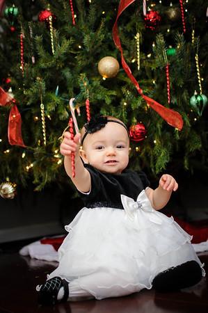 Webb Christmas