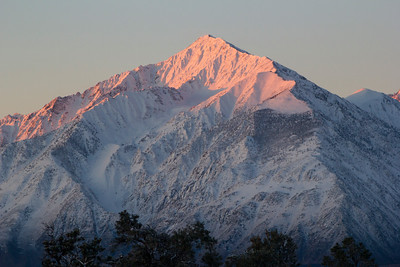Mount TOM alpen glow