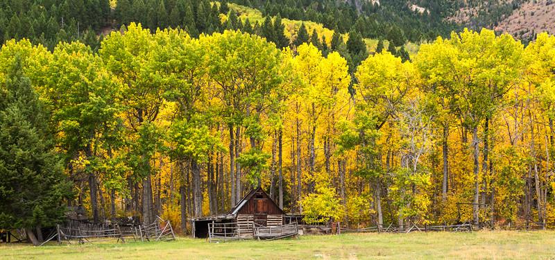 Montana in the fall. West of Anaconda toward Phillipsburg