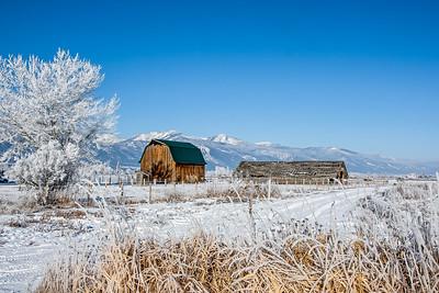 Frost Farm - Stevensville, Montana