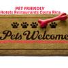 Pets Welcome Doormat