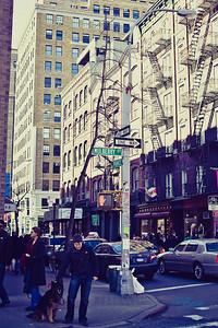 NY_Life-11