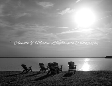 """""""Serenity by the Sea"""" Sandy Cove, North East MD"""