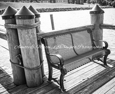 """""""Have a Seat"""" Sandy Cove, North East MD"""