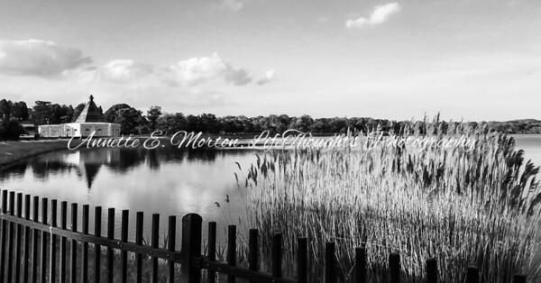 """""""Black & White Beauty at The Bello"""" Lake Montebello, Baltimore MD"""