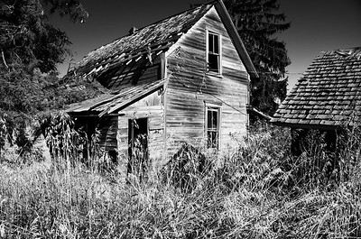 Old Homestead Palouse photo