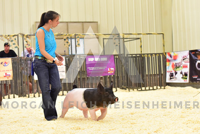 BlackGold_Showmanship_Senior_0001