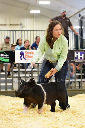 BlackGold_Showmanship_Senior_0012