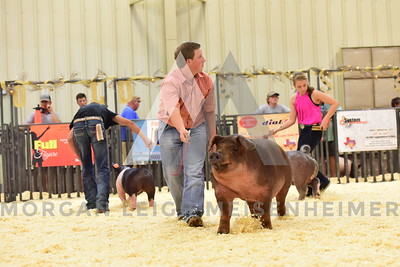 BlackGold_Showmanship_Senior_0024