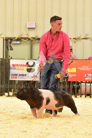 BlackGold_Showmanship_Senior_0030
