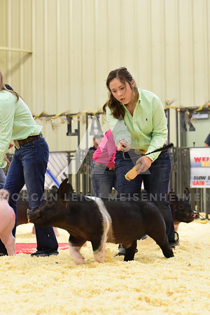 BlackGold_Showmanship_Senior_0009