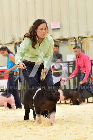 BlackGold_Showmanship_Senior_0011
