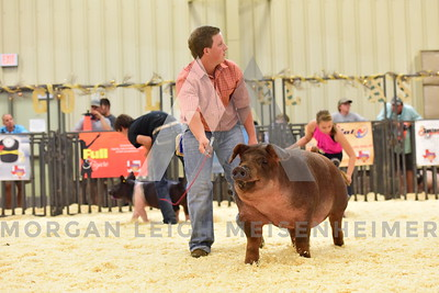BlackGold_Showmanship_Senior_0025