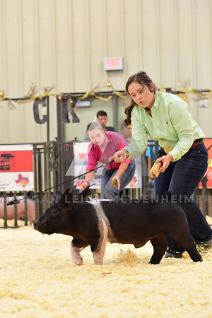 BlackGold_Showmanship_Senior_0010