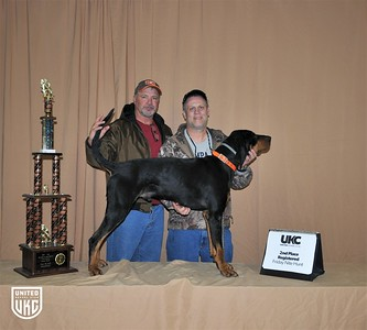 2017 American Black & Tan Days Friday Nite Hunt 2nd Place Registered