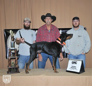 2017 American Black & Tan Days Friday 7th Place Registered