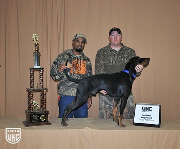 2017 American Black & Tan Days Friday 3rd Place Registered