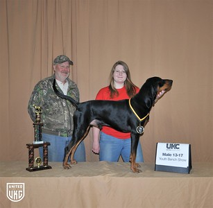 2017 American Black & Tan Days Youth Bench Show 13-17 Male