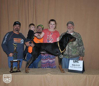 2017 American Black & Tan Days Youth Bench Show 8-12 Male