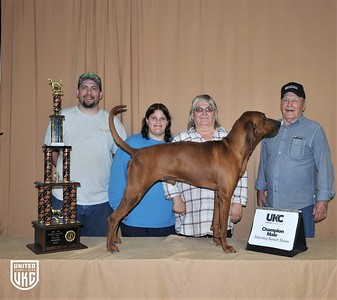 2017 American Black & Tan Days Saturday Champion Male