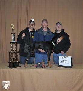 2017 American Black & Tan Days Saturday 4th Place Nite Champion