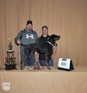 2017 American Black & Tan Days Saturday 10th Place Registered