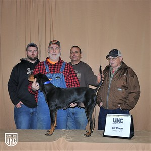 2017 American Black & Tan Days Senior Hunt