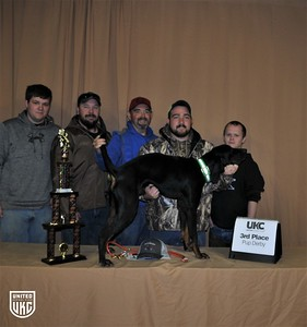 2017 American Black & Tan Days Pup Derby