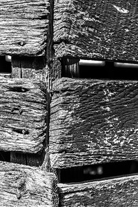 Old Wood Study 32 (BW)