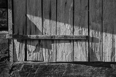 Old Wood Study 14 (BW)