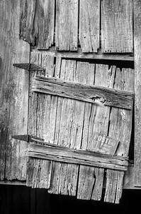 Old Wood Study 26 (BW)