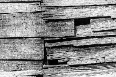 Old Wood Study 18 (BW)