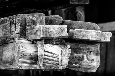 Old Wood Study 04 (BW)