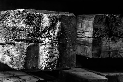 Old Wood Study 02 (BW)