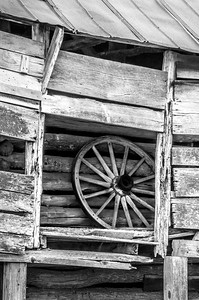 Old Wood Study 28 (BW)