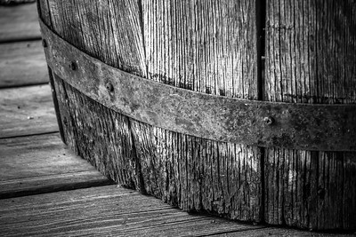 Old Wood Study 20  (BW)