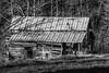 Rustic Barn Study 19 (BW)