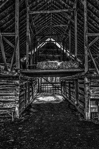 Old Barn Morning (BW)