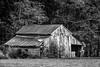 Rustic Barn Study 12 (BW)