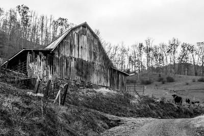 Rustic Barn Study 05